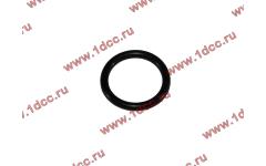 Кольцо уплотнительное форсунки резиновое H2/H3 фото Санкт-Петербург